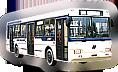 Neman buses